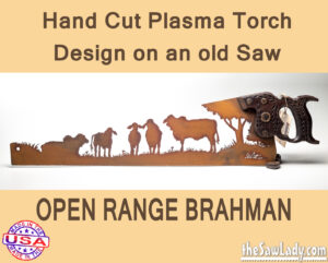 open-range-brahman metal art saw